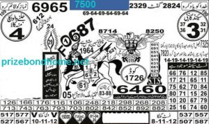 prime photo state guess papers latest february 2021 Bond 7500 Lahore